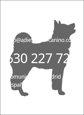 educador adiestrador canino Madrid