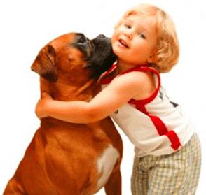 perros y niños-1