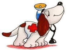 perro_medico