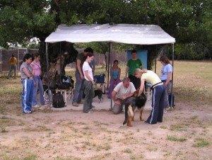 consulta-ficha-etología